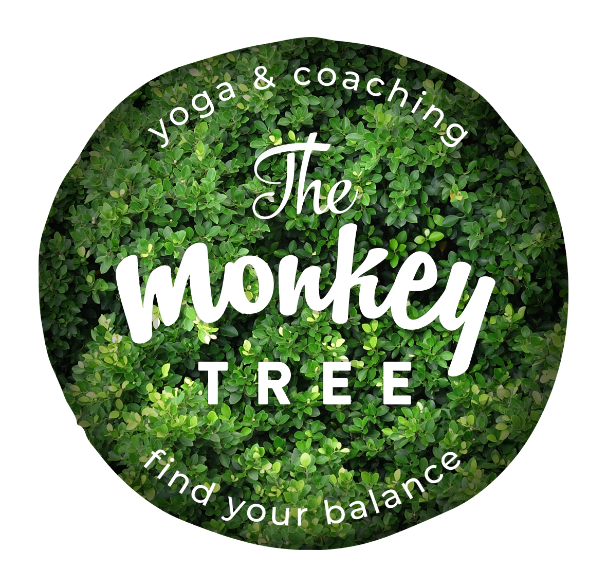 The Monkey Tree